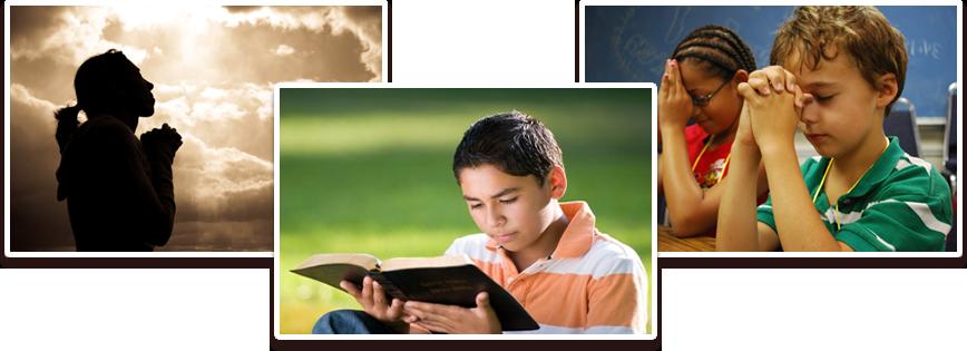 Discernimiento describiré siete pasos que te pueden ayudar a discernir el proyecto de Dios sobre ti.