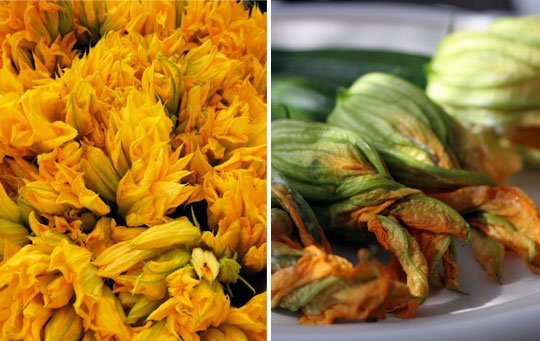 Five Ways to Eat Squash Blossoms